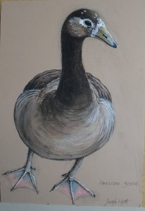 lonesome mixed-race goose